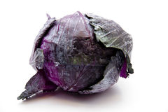 Red cabbage. Fresh red cabbage on white background Royalty Free Stock Photos