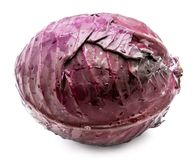 Red Cabbage isolated Stock Image