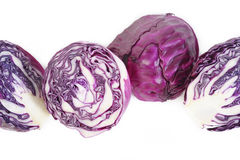 Red cabbage isolated on white Stock Photos