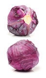Red cabbage Stock Photography