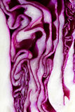 Red Cabbage macro Royalty Free Stock Photos