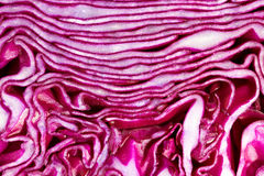Red Cabbage macro Royalty Free Stock Photo