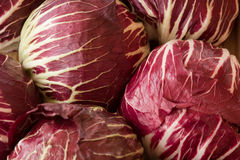 Red cabbage, Nuremberg, Germany Royalty Free Stock Photo