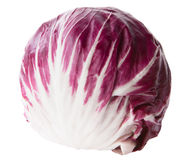 Red cabbage radicchio isolated on white Royalty Free Stock Photos