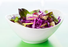 Red cabbage salad. With apple,pineapple,dried cranberries and almonds Stock Photography