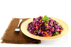 Red cabbage salad seasoned with carrots and celery Royalty Free Stock Photography
