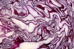 Red cabbage slice close-up Royalty Free Stock Photography