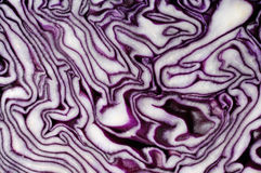 Red Cabbage Slice Texture. Red cabbage slice close-up Abstract organic texture background Brassica oleracea var. capitata f. rubra Stock Images