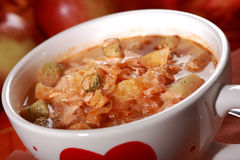 Red cabbage soup (sauerkraut) Royalty Free Stock Images