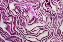 Red cabbage texture stock photo