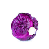 Red cabbage on white background Royalty Free Stock Images