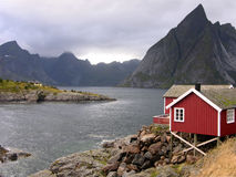 Red cabin on fjord in Norway. Cabin typically painted in dark red (used by fishermen for work, local people for living and some are rented to tourists) on fjord Royalty Free Stock Photos