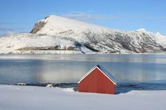 Red cabin on icy fjord. Red cabin on icy Lofoten's fjord of Napp, and the mountains of Flakstad island on the background Royalty Free Stock Photos