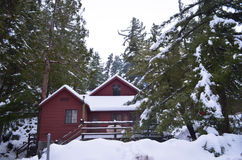 Red Cabin in Mount Baldy Royalty Free Stock Photography