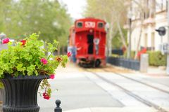 A red caboose in the city. A cityscape in a horizontal presentation with focused potted geraniums in the foreground and a red caboose train is slightly blurred Royalty Free Stock Images