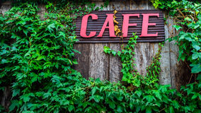 Red cafe sign on wooden wall. Red cafe sign on old wooden wall covered with vines Royalty Free Stock Photography