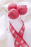 Red Cakepop Stock Image
