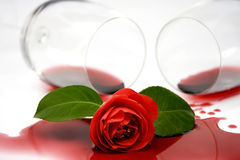 Red camelia and wine Royalty Free Stock Image