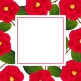 Red Camellia Flower on White Banner Card. Vector Illustration.  vector illustration