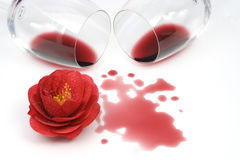 Red camellia and spilled wine. Red camellia flower and red wine on white background stock images