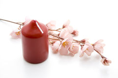 Red candle with blossoms Royalty Free Stock Photos