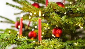 Red candle in christmas tree Stock Photo