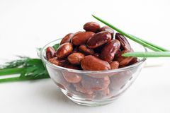 Red canned beans. In glass bowl with fresh green onions and parsley Stock Images