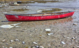 Red canoe at low tide Royalty Free Stock Photography