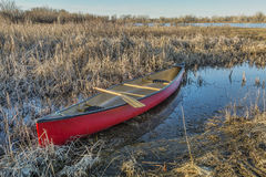 Red canoe in a wetland Stock Images