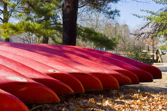 Red Canoes by Tree Royalty Free Stock Photography