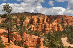 Red Canyon. Stock Photo