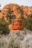 Red Canyon in Dixie National Foresst Royalty Free Stock Images