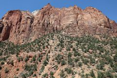 Red Canyon in Dixie National Forest. Utah. USA royalty free stock photography