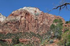 Red Canyon in Dixie National Forest. Utah. USA Stock Photo