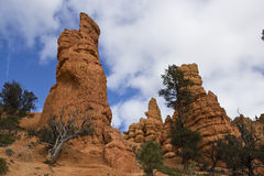 Red Canyon Hoodoo Royalty Free Stock Photo