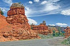 Red Canyon National Park Stock Images