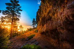 Red Canyon near Bryce at Sunset Stock Images