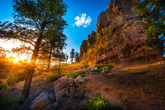 Red Canyon near Bryce at Sunset Stock Image