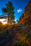 Red Canyon near Bryce at Sunset Stock Photography