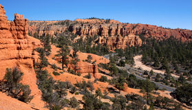 Red Canyon Rock Formations Stock Images