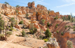 Red Canyon Trail Royalty Free Stock Images