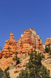 Red Canyon, Utah Stock Images