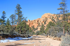 Red Canyon, Utah. Dry river bed in the Red Canyon, Utah Royalty Free Stock Images