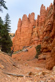 Red Canyon in Utah Stock Images