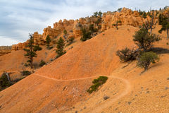 Red Canyon in Utah Stock Photography