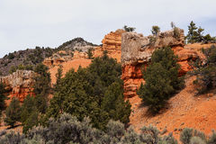 Red Canyon, Utah, USA Stock Photos