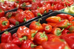 Red capsicum in a supermarket Royalty Free Stock Photography