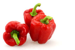 Red capsicum stock photo