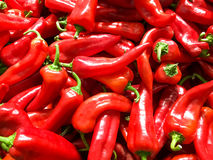 Red Capsicum In Vegetable Market Stock Photography