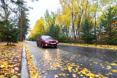 Red car on autumn road Stock Image